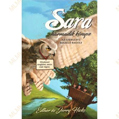 Esther és Jerry Hicks: Sara harmadik könyve